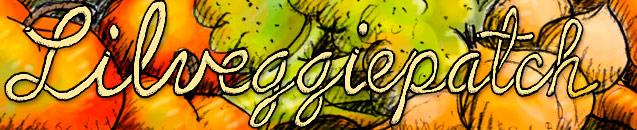 www.lilveggiepatch.com
